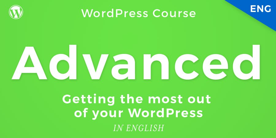 Advanced WordPress training course for professionals