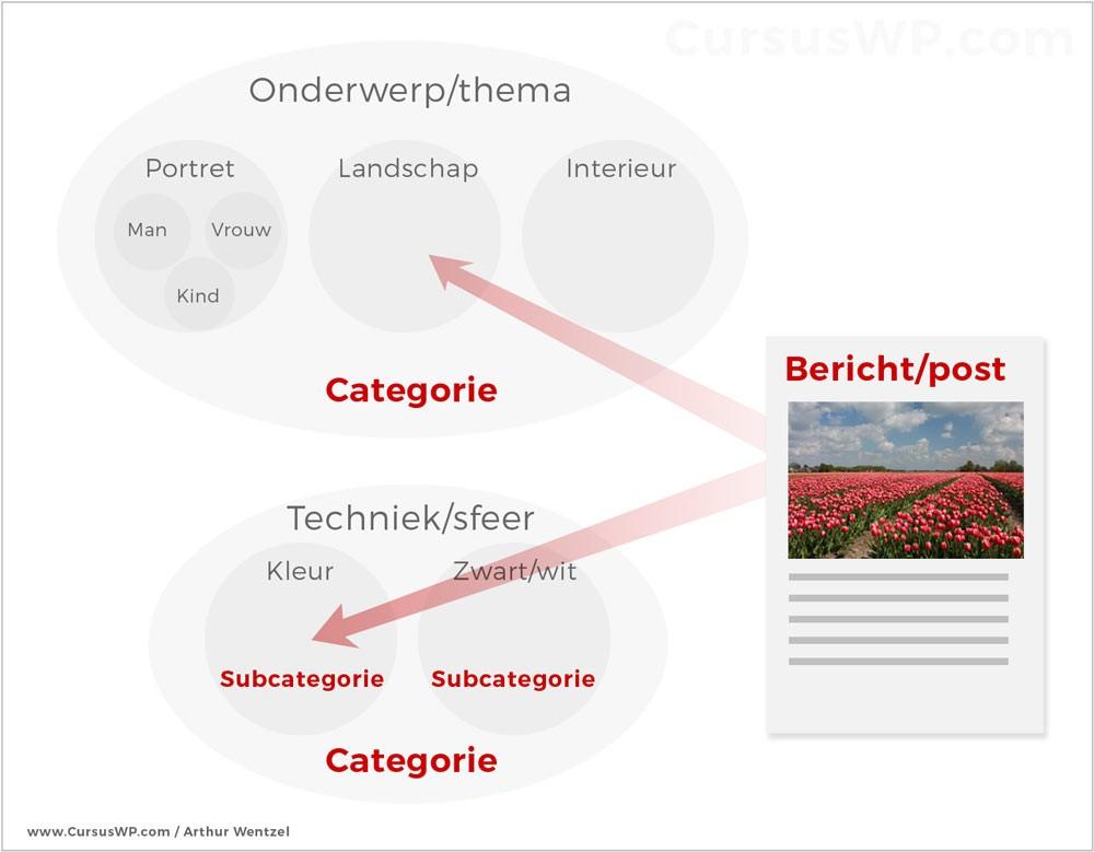 verschil bericht categorie pagina wordpress