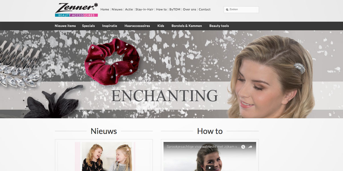 website webdesign Zenner