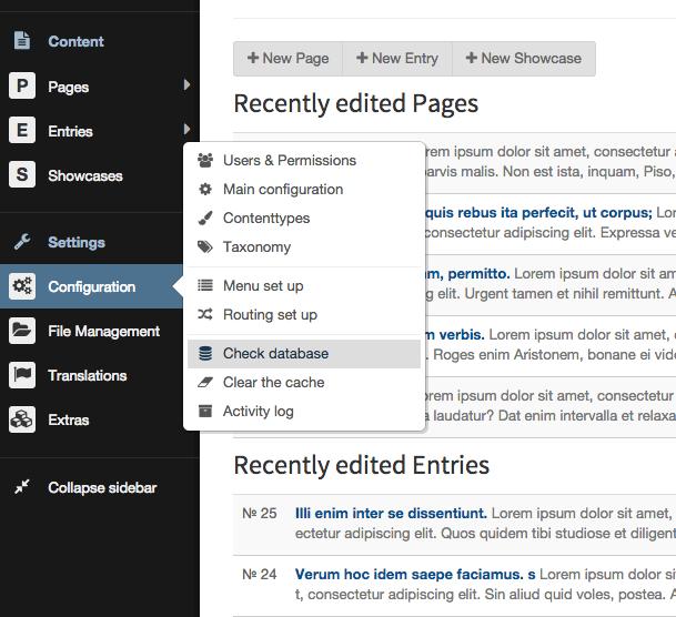 Bolt CMS alternatief WordPress cursus training website maken