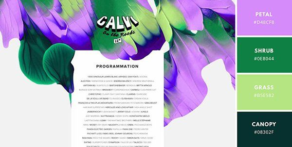Kleur kiezen WordPress webdesign