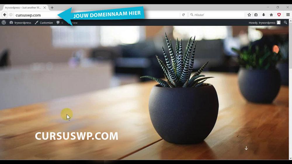 wordpress installeren op domeinnaam